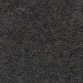WPW1135