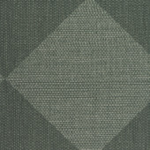 WPW1368